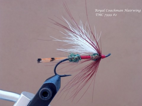 Royal Coachman Hairwing
