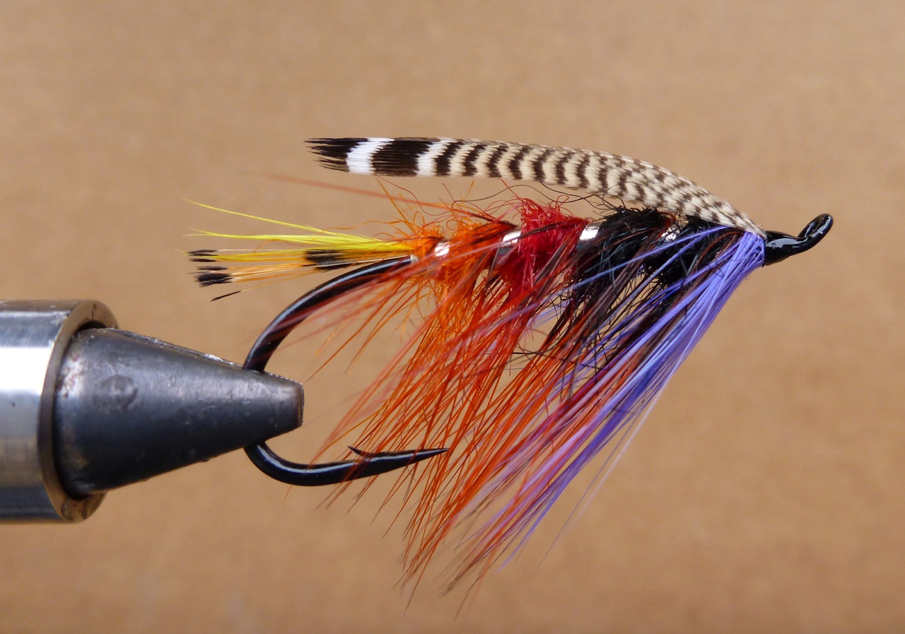 The Drake:  This pattern is in Michael Radencich's book, Salmon Fly Patterns, pg. 70.  Originally from; Francis Francis; A Book on Angling, fourth edition,1876  The Drake Tail; tippet sprigs and yellow toucan (I used marabou for toucan) Body; orange,red, & black pig's wool (seal's fur or sub) Rib; broad silver tinsel (flat tinsel) Hackle; coch-y-bondhu dyed dark orange Throat; lavender hackle Wing; two strip of pintail or summer duck (wood duck)