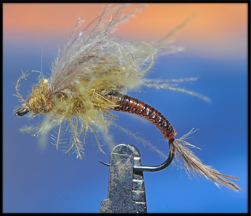 cdc loop wing mayfly emerger