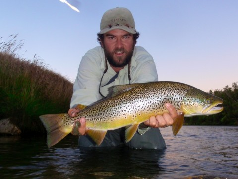 AG skated up this big brown right before dark in the Nevis River, South Island, NZ.