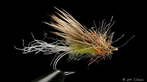 Caddis Emerger - Sasa Stosic