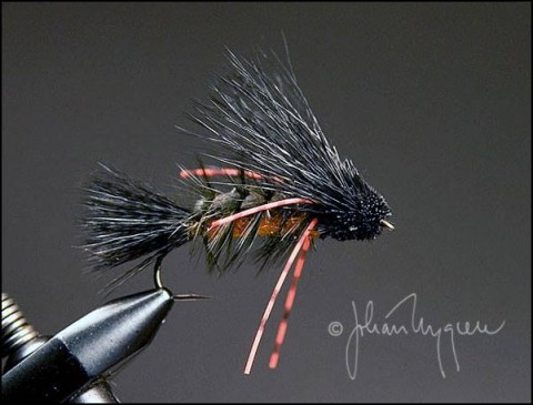 Agony Caddis - Tied by Johan Nygren