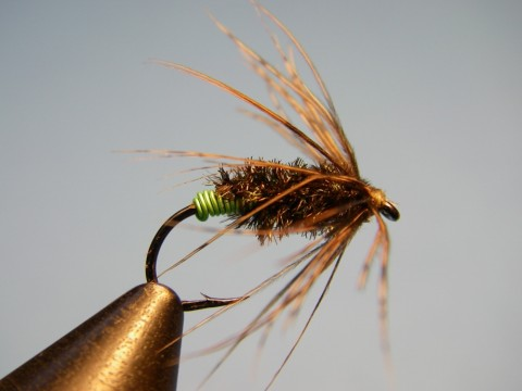 Green-Butt-Soft-Hackle-Diving-Caddis-Mothers-Day-Caddis-Pattern