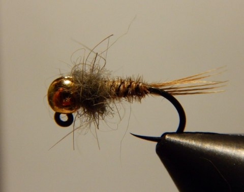 Mig Carnapeche - Pheasant Tail nymph
