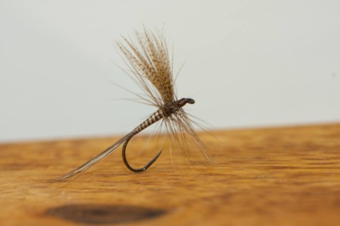 Quill Gordon tied by Anders Skau