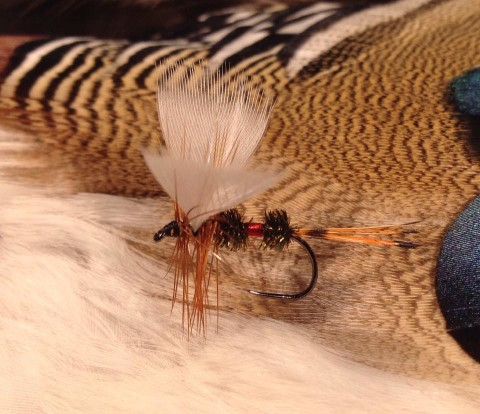 Royal Coachman Fan Wing tied by Jon Strand