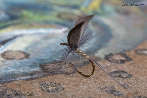 Labranche tied by Roger Enger Lie