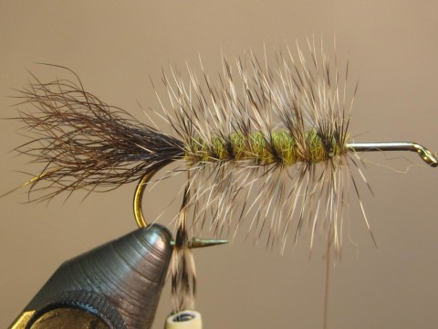 wrap hackle back to tail; capture tip with wire, then spiral through hackle to front of body, helicopter end and tie off