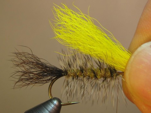 clean, stack, measure (tips to bend) a clump of yellow calftail; tie in, trim butts