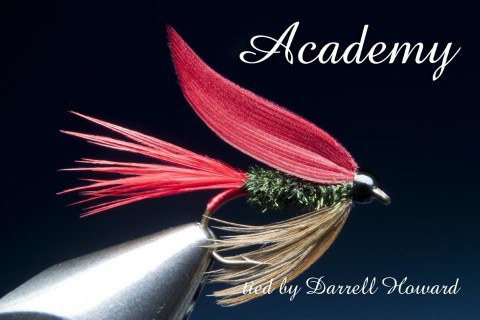 Academy - tied by Darrell Howard