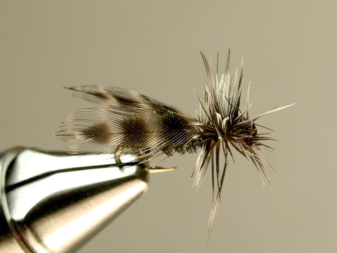 Deer Fly - tied by Bob Smock