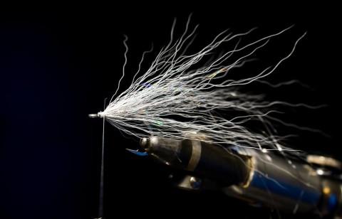 Pearl gray bucktail 360 degrees.