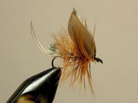 Duffings Night Caddis