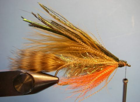 Tie in 6 to 8 strands of peacock herl on top of the fly.